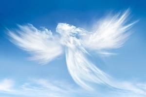 anjo_guarda