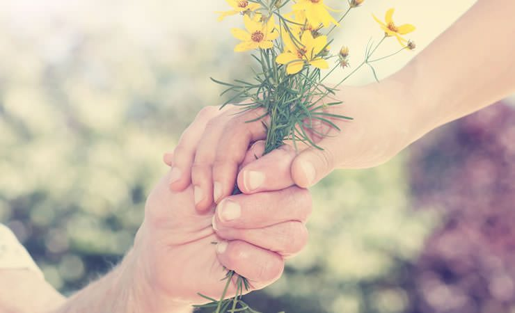 A arte de perdoar por uma visão quântica