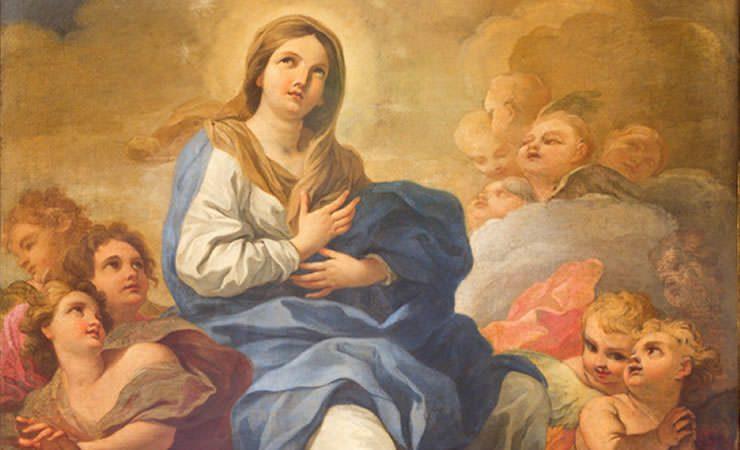 Hoje é Dia de Nossa Senhora da Conceição!