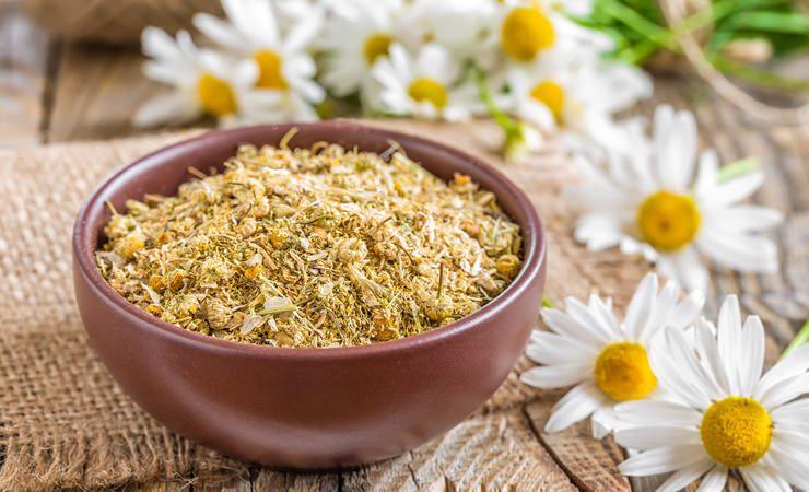 Chá de Camomila para elevar nosso ânimo e entusiasmo pela vida