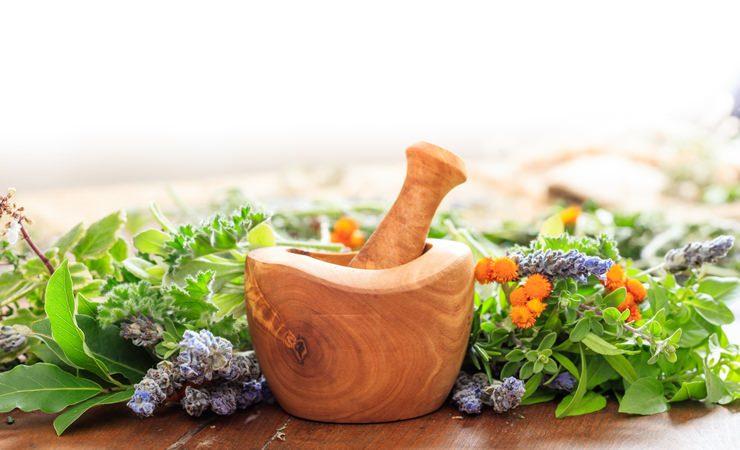 Curando os 7 Chakras com ervas, plantas e alimentos